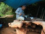 2003年7月17日 欅テーブル制作風景