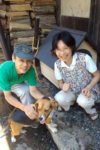 2015年8月23日 新たな家族・ビーグル犬のルーシーと