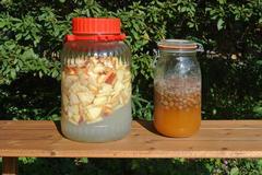リンゴとレーズンを使ったフルーツ種の天然酵母